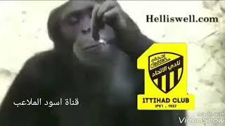 تجميع مقاطع طقطقه على الاتحاد جديد 2019 Youtube
