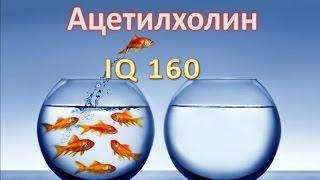 Ацетилхолин, IQ 160(Ацетилхолин - это основной нейромедиатор, ответственный за высшие функции мозга. Казалось бы, если настроит..., 2015-06-29T18:48:01.000Z)