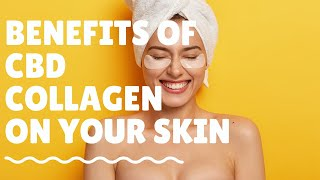 How CBD Collagen skincare increases the elasticity of my skin? Benefits of CBD collagen on my skin.