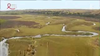 Le Brahmapoutre, un fleuve au coeur de l'Assam