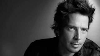 Chris Cornell - Killing Birds