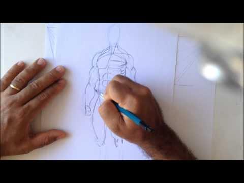 Anatomia Artística- Artistic Anatomy