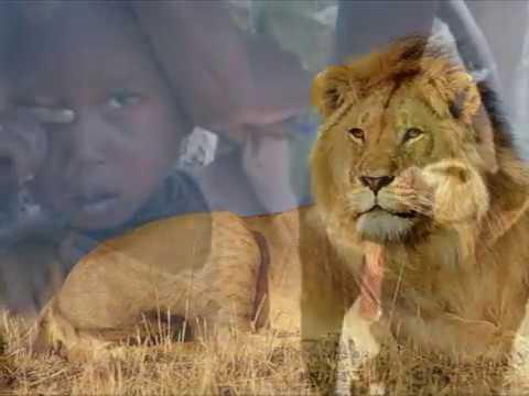 Fotos Africa