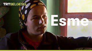 Esme - TRT Belgesel