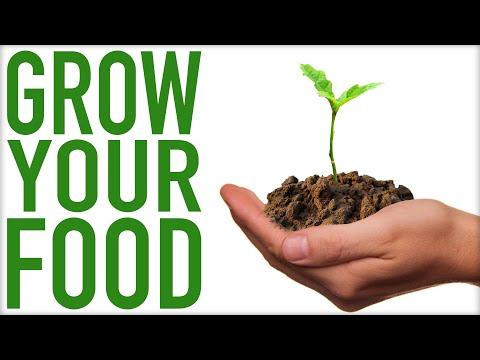 Grow Your Own Organics & Reclaim Your Food!