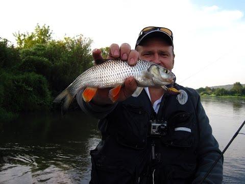 на что ловить рыбу в мае на оке в