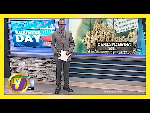 Ganja Stakeholders Respond to U.S. Safe Banking Bill   Jamaican Business Day
