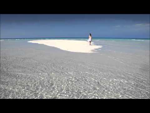 Jaidene Veda, Josh Milan - Beautiful (N'Dinga Gaba Mix)