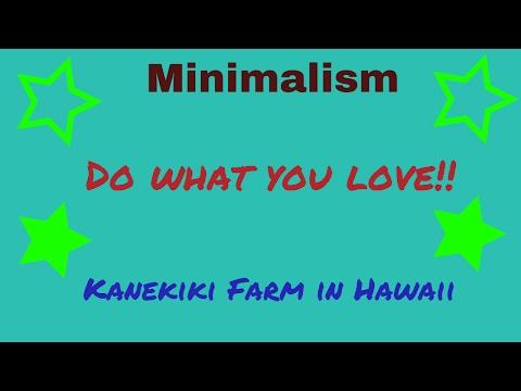 Minimalism and Kanekiki