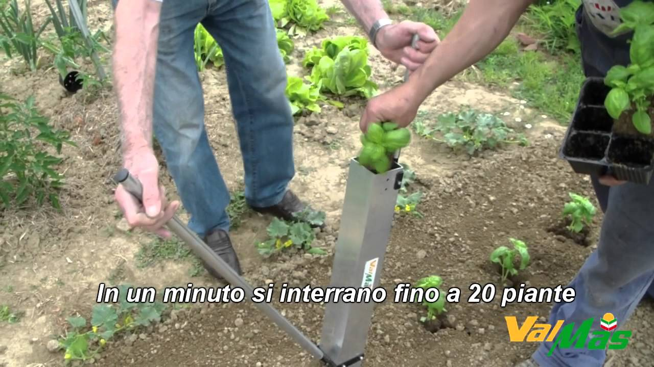 Trapiantatrice manuale per ortaggi il trapiantatore for Piantine ortaggi