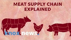 How pandemics like COVID-19 can affect meat shortages and price gauging