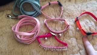 Cat Collars and Leashes