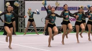 福井商業高校チアリーダー部JETS 全日本チアダンス選手権2017優勝! thumbnail