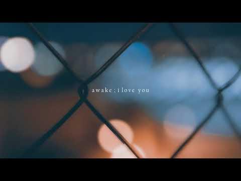 awake ; i love you | bts jin