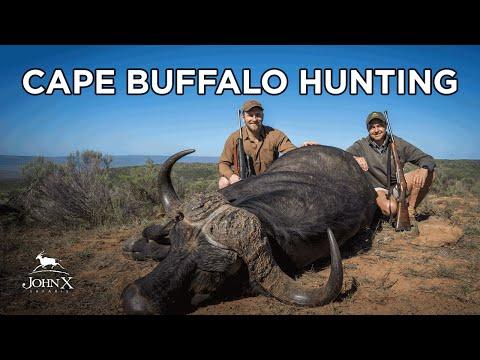 Cape Buffalo Hunting | Lone Star Outdoor Show in Africa | John X Safaris