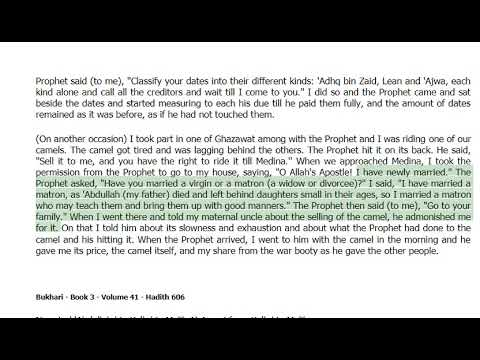 Debt - in Loans, Payment of Loans, Freezing of Property, Bankruptcy -Bukhari Hadith