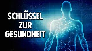 Der Schlüssel zur Gesundheit - Heilung von Krankheiten durch Informationsmedizin