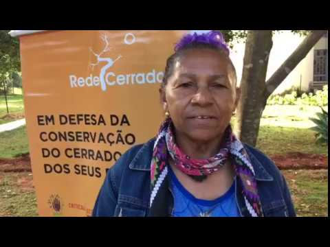 Eleita a nova coordenação da Rede Cerrado