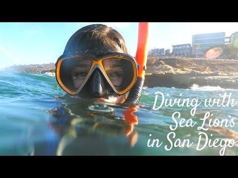 BUSINESS TRIP À SAN DIEGO (avec Cindy Cournoyer) | Vlog 14