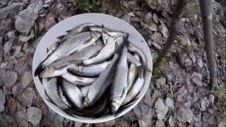 Рыбалка в Карелии. Открытие летнего сезона 2016 г.(Каждый год мы открываем летний сезон рыбалки на этой реке., 2016-05-13T08:45:09.000Z)