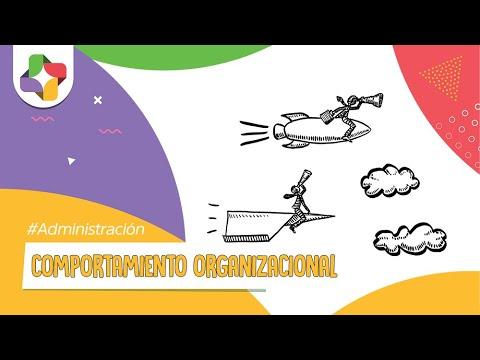 Comportamiento Organizacional (C.O.)