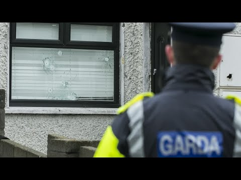 'At least' nine shots fired at Dublin house in early morning attack