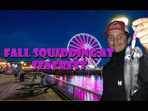 Fall Squidding At Seacrest