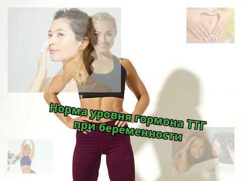 Норма уровня гормона ТТГ при беременности