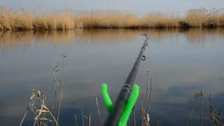 Рыбалка на Фидер! Вот они поклевки! Рыбалка в Краснодарском Крае!