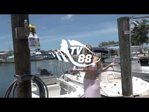 Check Out Captain Pip's Boat Rentals In Marathon, Florida Keys