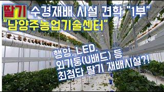 딸기수경재배시설 견학 1부 / 남양주농업기술센터/귀농작…