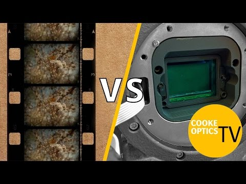 Film vs Digital: The Big Debate || Spotlight
