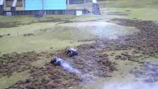いつもはきれいな芝生で 全速でレースしますが 本日は いのしし さんが ...