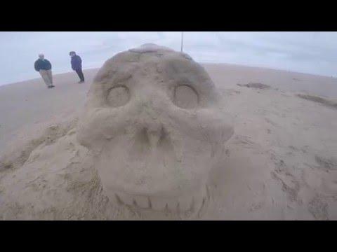 OHSU DS1 Beach Trip 2015