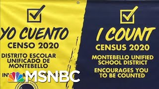 Ending The Census Early Could Have Huge Political Consequences - Day That Was | MSNBC