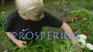 Prospering