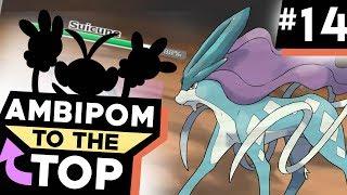 """AMBIPOM TO THE TOP!"" #14 Pokemon Ultra Sun & Moon! UU Showdown Live w/PokeaimMD"