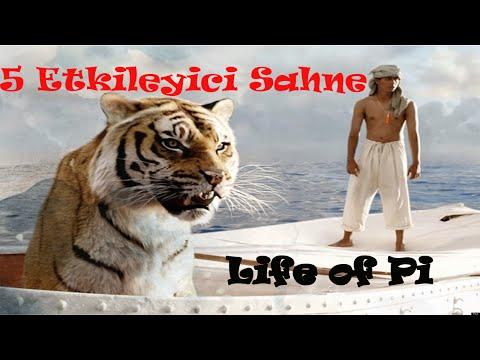 Pi'nin Yaşamı filminden etkileyici sahneler
