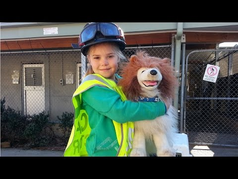 RSPCA Short Tails: School Holiday Program - Part 1