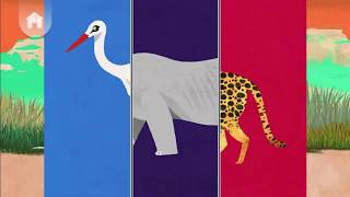Animal Match Up | Learning Animals Names for kids in English | Educational Games for Kids