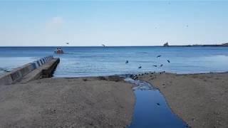 Море в Феодосии - май 2019   Путешествие по Крыму   Сочинцы в Крыму / Видео