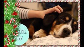 Nivea škola života #2 - Tipy a rady na vánoční relax