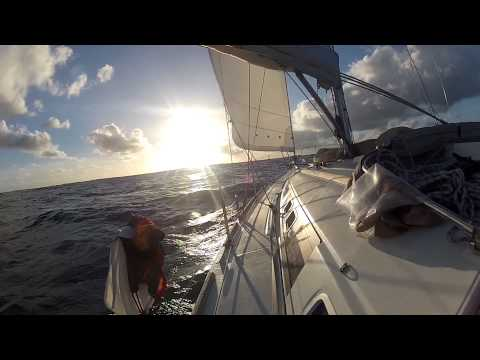 Cap Vert - Barbade - Martinique - Transat Tikehau part 13