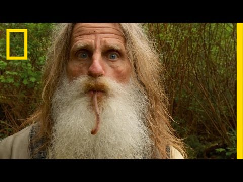 Forest Trail Mix | The Legend of Mick Dodge - YouTube
