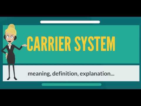 What is CARRIER SYSTEM? What does CARRIER SYSTEM mean? CARRIER SYSTEM meaning & explanation