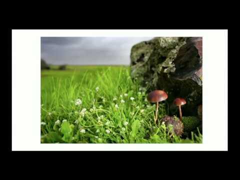 Vídeo Curso de fotografia senac rj