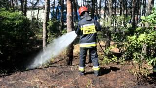 Pożar w lesie na terenie SOPLA