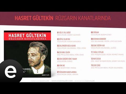 Güle Yel Değdi (Hasret Gültekin) Official Audio #güleyeldeğdi #hasretgültekin - Esen Müzik