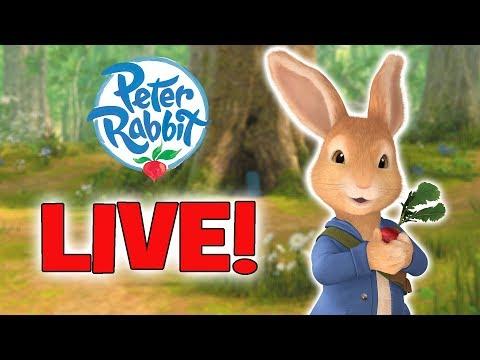 PETER RABBIT LIVE ADVENTURES