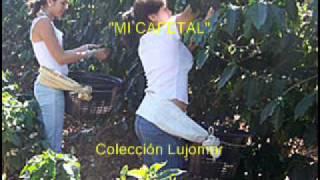 Garzón y Collazos - Mi cafetal - Colección Lujomar.wmv